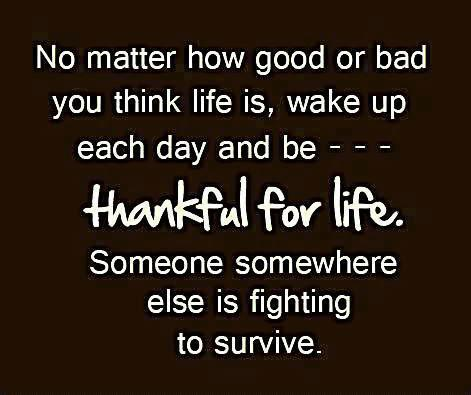 "Gratitude Quotes - ""No matter how good or bad you think life is, wake up each day and be thankful for life. Someone somewhere else is fighting to survive."""